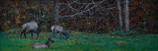 Elk on the Edge of Autumn by Linda Eades Blackburn