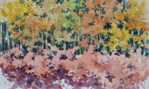 Fall Woods by Linda Eades Blackburn