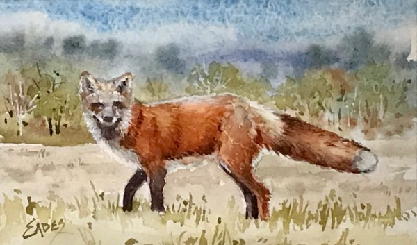 Fox Meadow WC by Linda Eades Blackburn