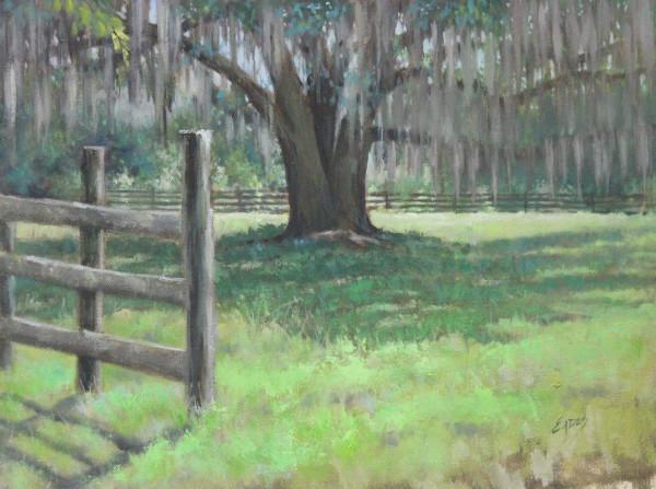 Laurie's Farm by Linda Eades Blackburn