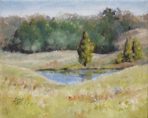 Little Pond by Linda Eades Blackburn