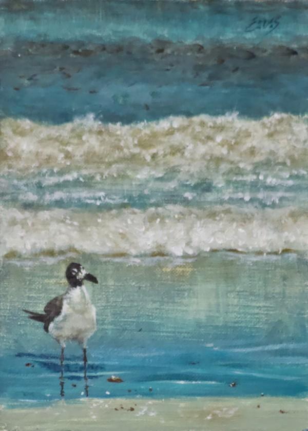 Lollygaggin by Linda Eades Blackburn