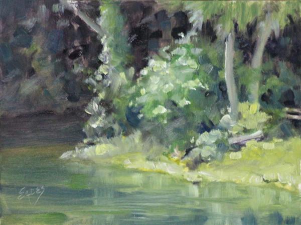 Noon at the Springs by Linda Eades Blackburn