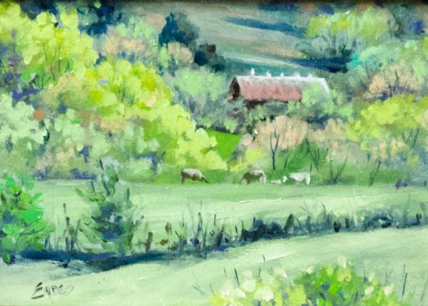 Off the Trace by Linda Eades Blackburn