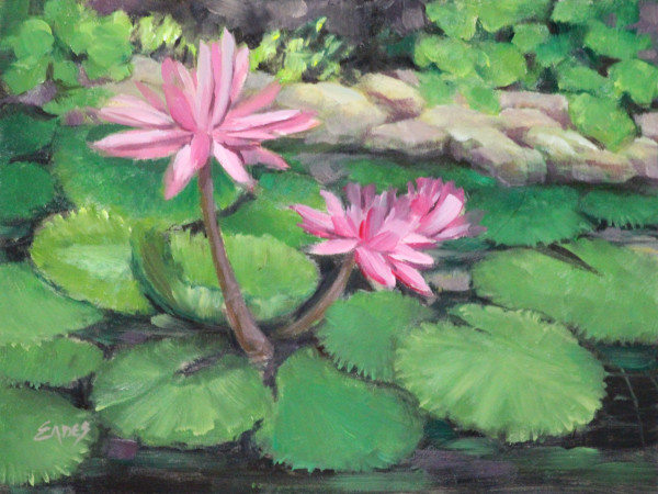 Pink Lotus by Linda Eades Blackburn