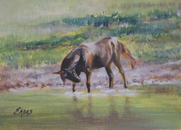 Pond Play 2 by Linda Eades Blackburn
