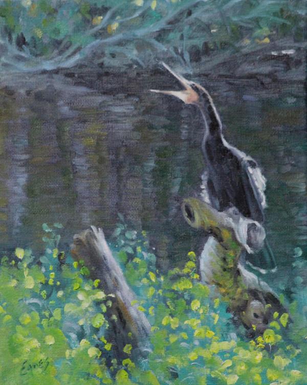 Silver Springs Wildlife Study by Linda Eades Blackburn
