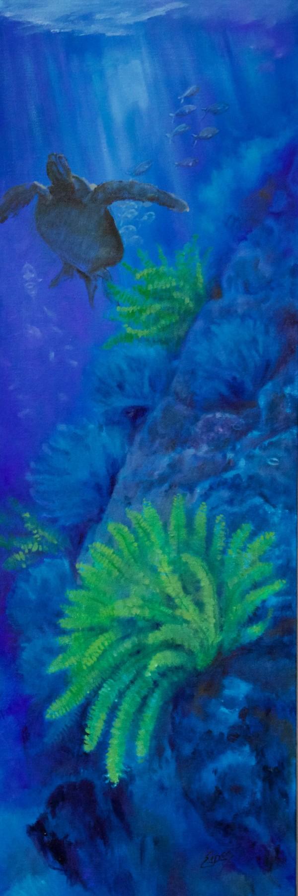 Sea Turtle and Ferns by Linda Eades Blackburn