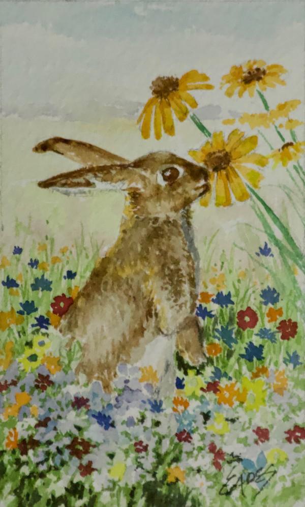 Sniff Sniff by Linda Eades Blackburn