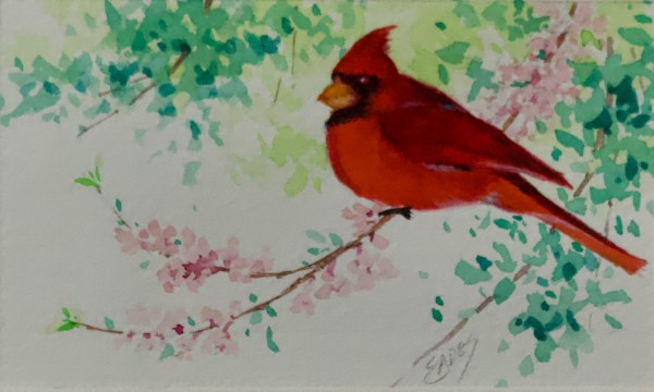 Spring Cardinal by Linda Eades Blackburn