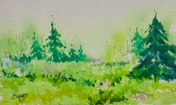 Spring Meadow by Linda Eades Blackburn