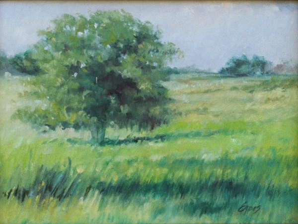 Summer Field by Linda Eades Blackburn