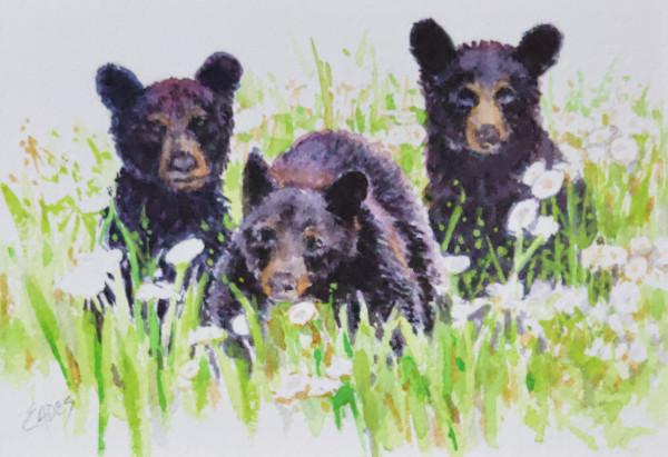 Three Spring Cubs by Linda Eades Blackburn