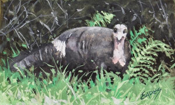 Turkey Lurkey by Linda Eades Blackburn