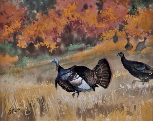 Turkey Trot by Linda Eades Blackburn