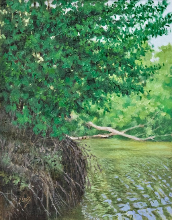 Up Near the Tennessee River by Linda Eades Blackburn