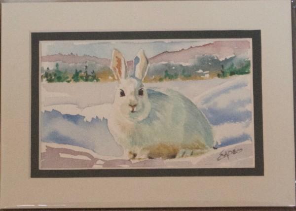 White Bunny by Linda Eades Blackburn