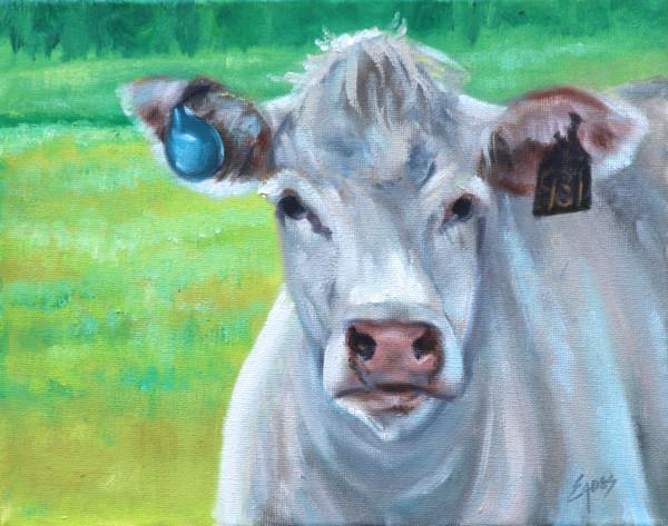White Cow by Linda Eades Blackburn
