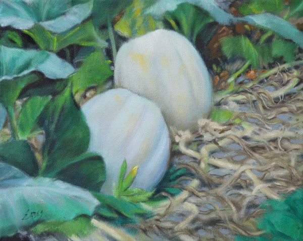 White Pumpkins in the Patch by Linda Eades Blackburn