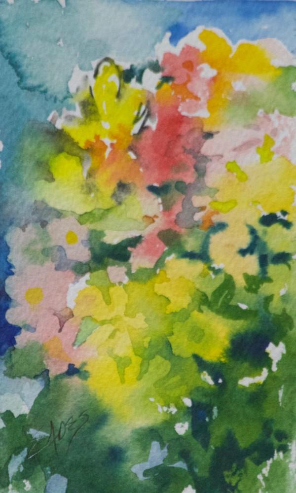 Wildflower Abstraction by Linda Eades Blackburn
