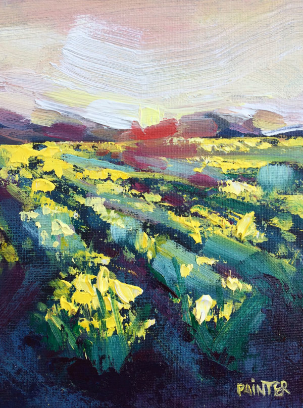 Wings Of Dawn II - Mawnan Daffodils Study by Rachel Painter