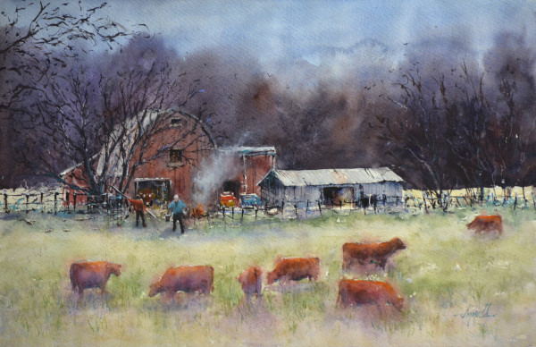 The Cows Came Home by Judy Mudd