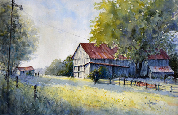 Evening Light by Judy Mudd