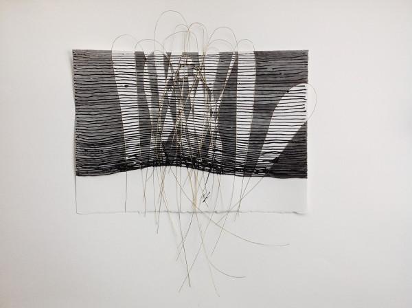 Hondo by Diana Gabriel