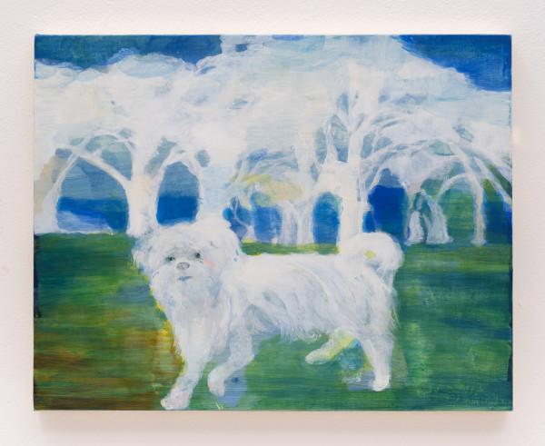 At Butler field by Minami Kobayashi