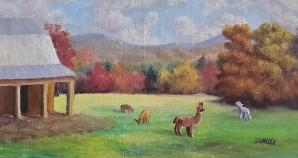 Valley Girls by Sharon Allen
