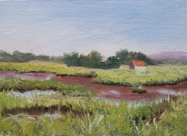 Low Tide on a Parker River Marsh by Sharon Allen