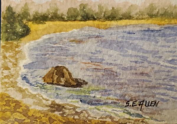 At Rye 2 by Sharon Allen