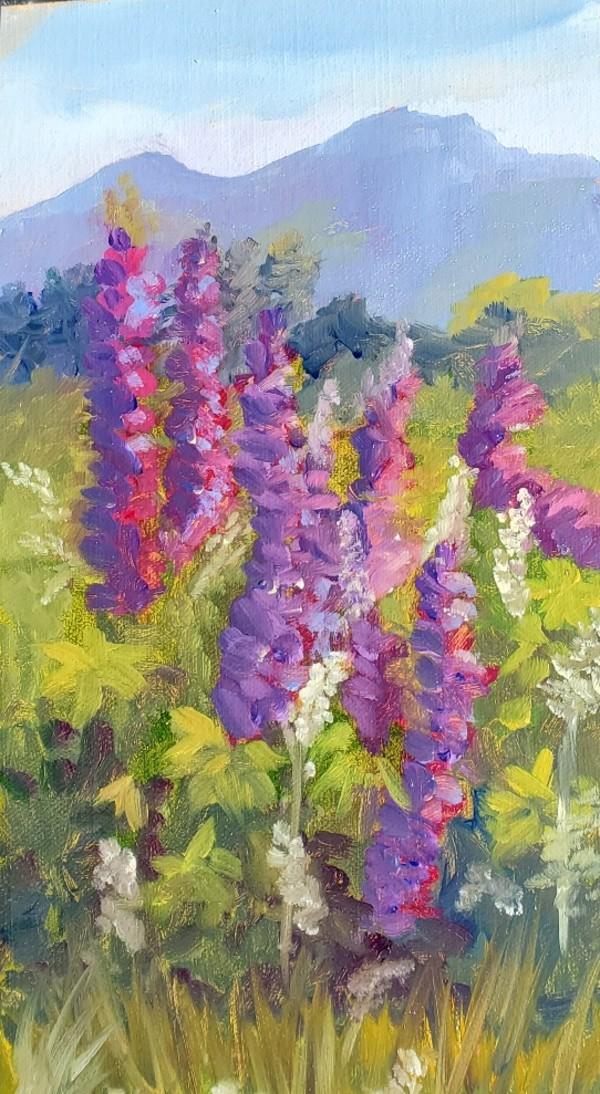 June Splendor by Sharon Allen