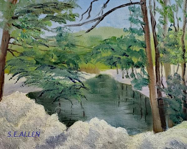 Snowy River by Sharon Allen