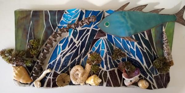 Sea of Cortez by Andrea L Edmundson