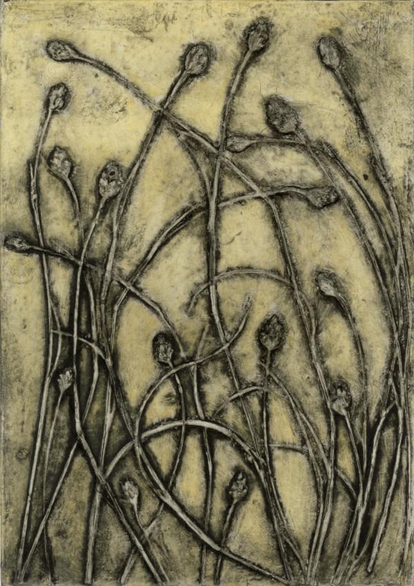Beach Grass by Jacky Lowry