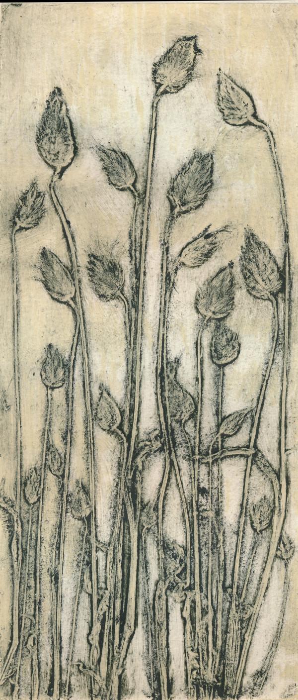 Cotton Tail Grass 2, 1/5 #1 by Jacky Lowry
