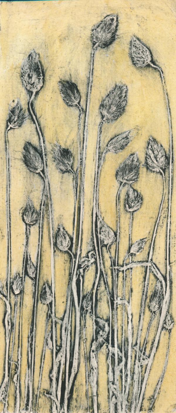 Cotton Tail Grass 3 1/5 #1 by Jacky Lowry