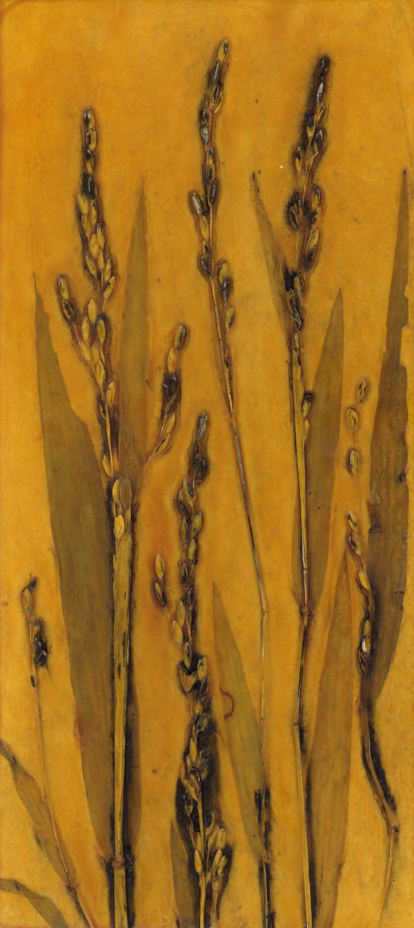 Forest Rice Grass 1 by Jacky Lowry