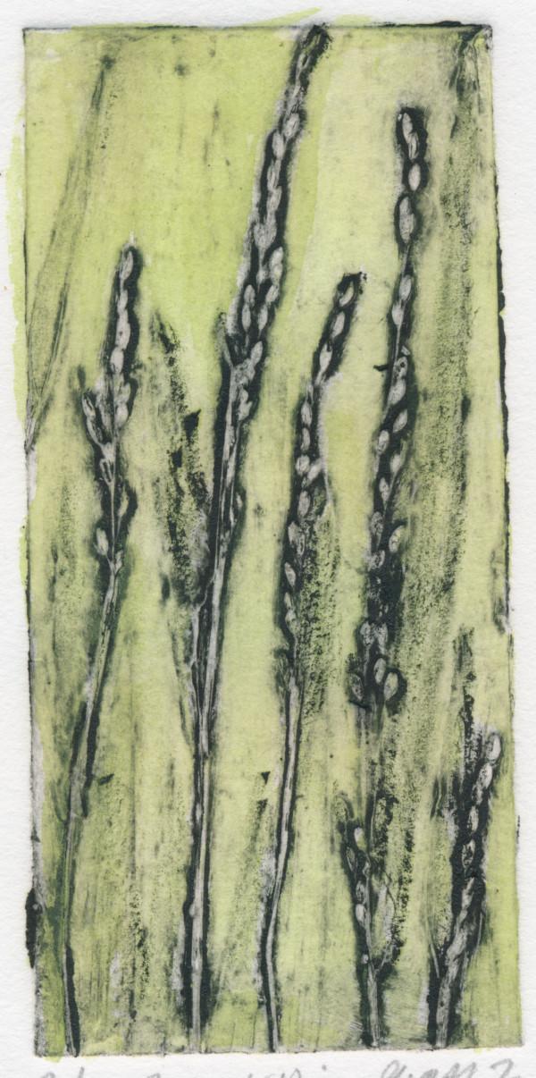 Forest Rice Grass 2, 6/6 by Jacky Lowry