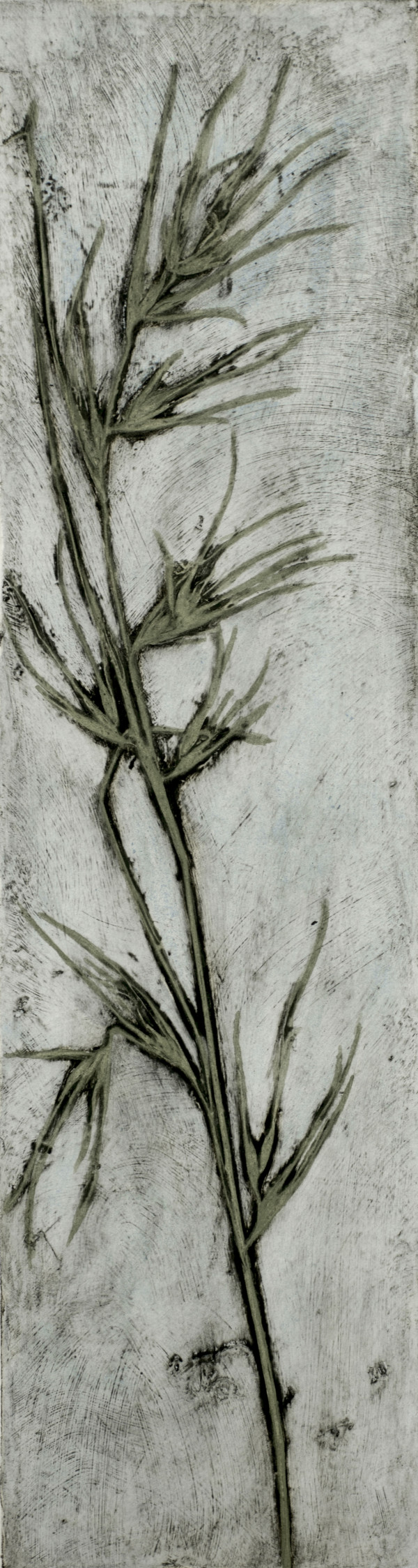 Kangaroo Grass 2 1/5 by Jacky Lowry