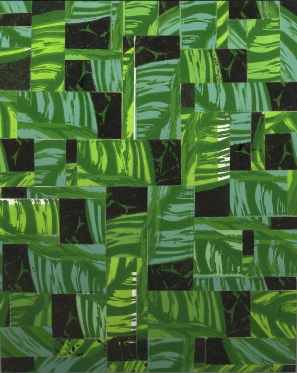 Rainforest by Jacky Lowry