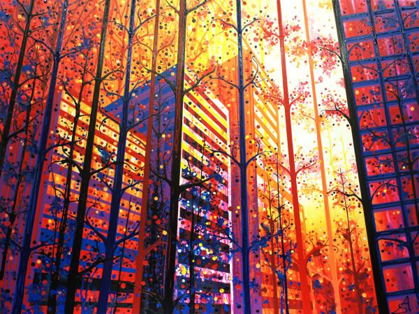 Through the Trees (Toronto + California)