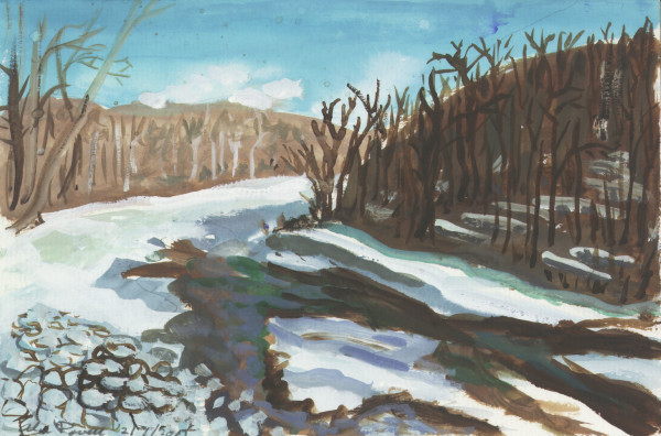 February 7, 2007 Ice on Tohickon Creek by Alan Powell