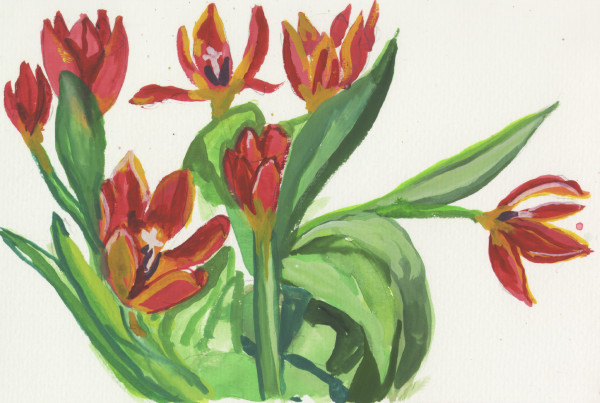February 8, 2007 Flowers  by Alan Powell