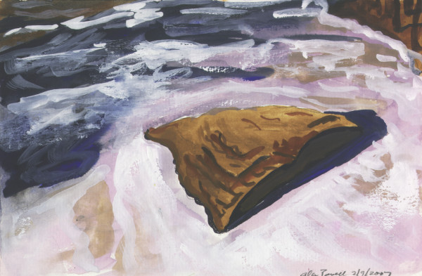 February 9, 2007 Rock in Tohickon Creek by Alan Powell