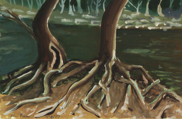 January 18, 2007  Tohickon Creek Tree Roots by Alan Powell