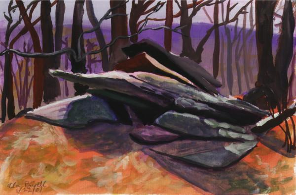 January 22, 2007  Rock on Tohickon Creek by Alan Powell