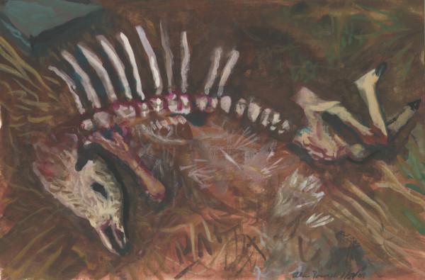 January 27, 2007  Deer Carcass by Alan Powell