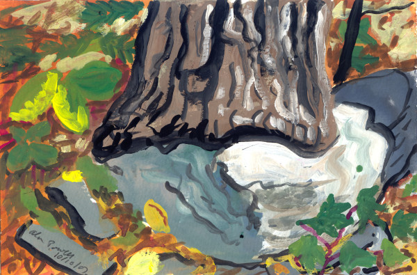 October 10, 2007; Tree Trunk by Alan Powell